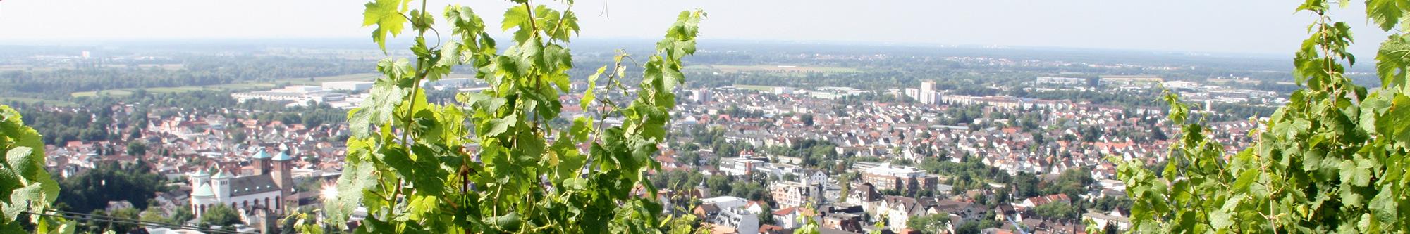 Überblick Bensheim